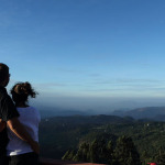 shamrock-munnar-honeymoon