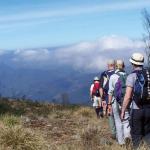 shamrockmunnar-trekking-munnar